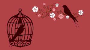 Vogel in Käfig und Vogel davor